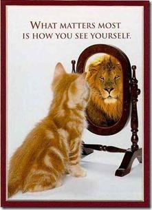 Cat Mirror Lion-false confidence