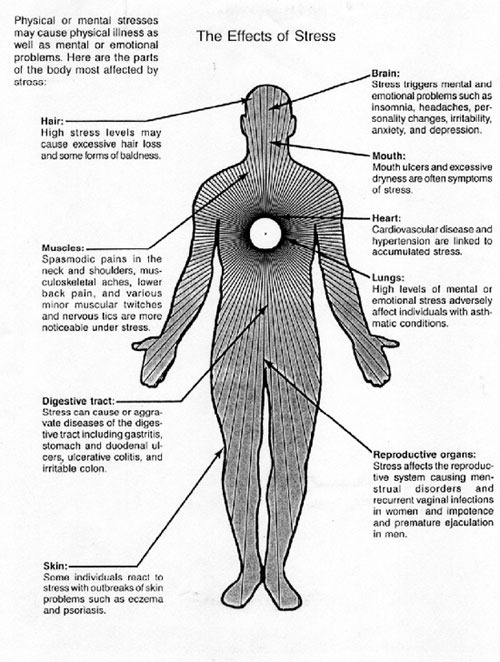 stress physical and mental effects stress The american psychological association's stress in america report provides a useful table, shown below, indicating the effects of stress on your body, your mood, and your behavior.