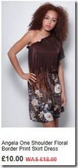 Angela one shoulder floral border print skirt dress
