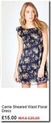 Carrie sheared waist floral dress