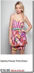 Danika flower print dress