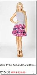 Gina polka dot and floral dress
