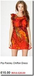 Pip paisley chiffon dress