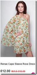 Renae cape sleeve rose dress