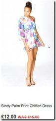 Sindy palm print chiffon dress